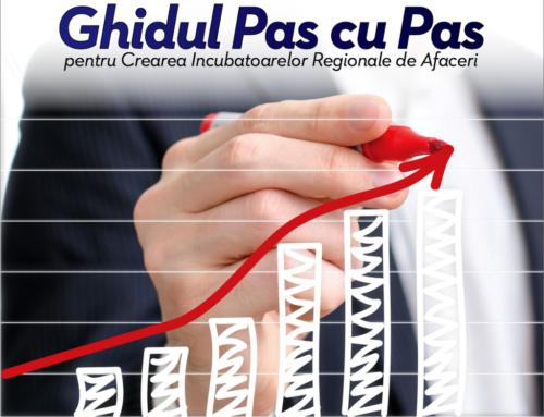 Gidul Pas cu Pas pentru Crearea Incubatoarelor Regionale de Afaceri