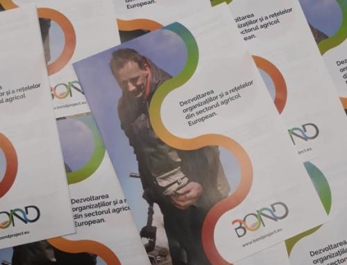 Atelier de lucru tematic organizat la nivel național în Republica Moldova